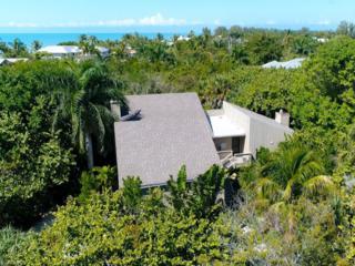921 Strangler Fig Ln, Sanibel, FL 33957 (MLS #217017203) :: The New Home Spot, Inc.