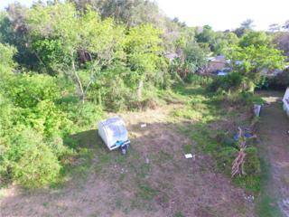 221 Sacramento St, North Fort Myers, FL 33903 (MLS #217017333) :: The New Home Spot, Inc.