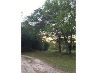 Staley Road Ext., Fort Myers, FL 33905 (MLS #217017379) :: The New Home Spot, Inc.