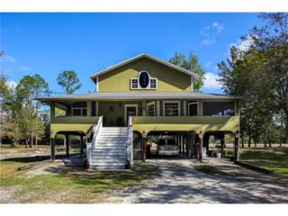 18590 Slater Rd, North Fort Myers, FL 33917 (MLS #217017463) :: The New Home Spot, Inc.
