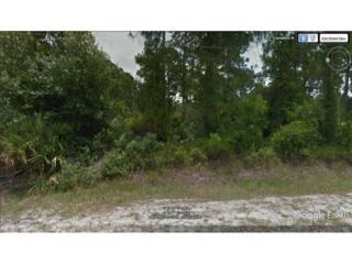 765 S Sendero St, Clewiston, FL 33440 (MLS #217017470) :: The New Home Spot, Inc.