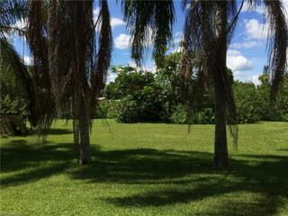 14254 Bigelow Rd, Fort Myers, FL 33905 (MLS #217017529) :: The New Home Spot, Inc.