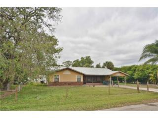 3001 Mercer Way, Labelle, FL 33935 (MLS #217017833) :: The New Home Spot, Inc.