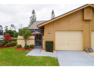 13422 Onion Creek Ct, Fort Myers, FL 33912 (MLS #217018054) :: The New Home Spot, Inc.