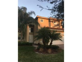 10124 Mimosa Silk Dr, Fort Myers, FL 33913 (MLS #217018231) :: The New Home Spot, Inc.