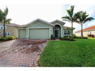 12635 Blue Banyon Ct, North Fort Myers, FL 33903 (MLS #217018241) :: The New Home Spot, Inc.