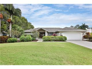 14554 Majestic Eagle Ct, Fort Myers, FL 33912 (MLS #217018452) :: The New Home Spot, Inc.