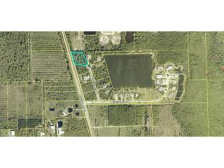 9437 Treasure Lake Ct, St. James City, FL 33956 (MLS #217018481) :: The New Home Spot, Inc.