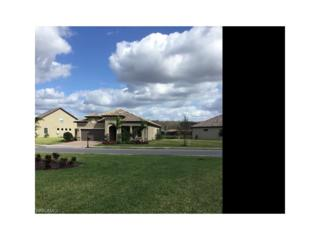 14218 Arrow Point Ct, Estero, FL 33928 (MLS #217018724) :: The New Home Spot, Inc.