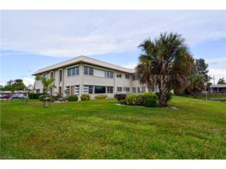 1915 W Lakeview Blvd #7, North Fort Myers, FL 33903 (MLS #217018932) :: The New Home Spot, Inc.