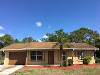 14138 Caribbean Blvd, Fort Myers, FL 33905 (MLS #217019055) :: The New Home Spot, Inc.