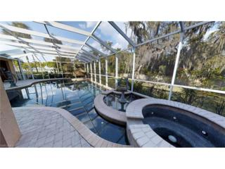 12800 Treeline Ct, North Fort Myers, FL 33903 (MLS #217019083) :: The New Home Spot, Inc.