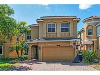 10241 Silver Palm Dr, Estero, FL 33928 (MLS #217019197) :: The New Home Spot, Inc.