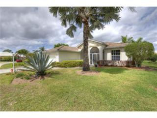 2141 Faliron Rd, North Fort Myers, FL 33917 (MLS #217019741) :: The New Home Spot, Inc.