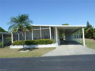 4810 Gulfgate Ln, St. James City, FL 33956 (MLS #217019786) :: The New Home Spot, Inc.