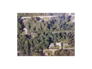 3839 Huntley St, Fort Myers, FL 33905 (MLS #217019863) :: The New Home Spot, Inc.