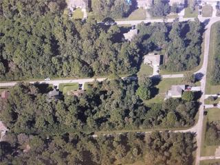 3837 Hopevale St, Fort Myers, FL 33905 (MLS #217019866) :: The New Home Spot, Inc.
