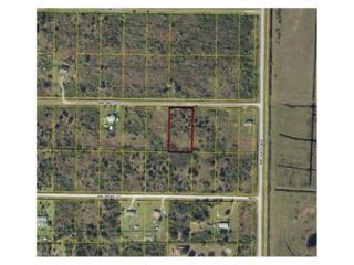 14568 NW 264th St, Okeechobee, FL 34972 (MLS #217020240) :: The New Home Spot, Inc.