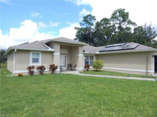 142 Viewpoint Dr, Lehigh Acres, FL 33972 (MLS #217020255) :: The New Home Spot, Inc.
