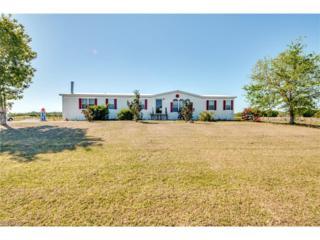 15600 N Mallard Ln, Fort Myers, FL 33913 (MLS #217020285) :: The New Home Spot, Inc.
