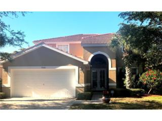 9500 Silver Pine Loop, Fort Myers, FL 33967 (MLS #217020304) :: The New Home Spot, Inc.