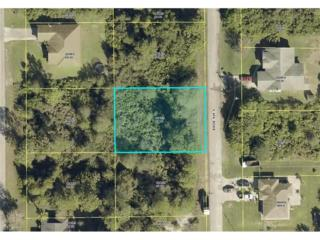 222 Baize Ave S, Lehigh Acres, FL 33974 (MLS #217020329) :: The New Home Spot, Inc.