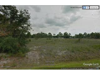 335 Granja St N, Clewiston, FL 33440 (MLS #217020381) :: The New Home Spot, Inc.