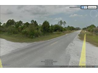 318 Horse Club Ave, Clewiston, FL 33440 (MLS #217020393) :: The New Home Spot, Inc.