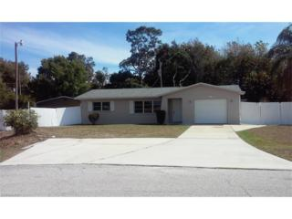 255 Lakeview Dr, North Fort Myers, FL 33917 (MLS #217020469) :: The New Home Spot, Inc.