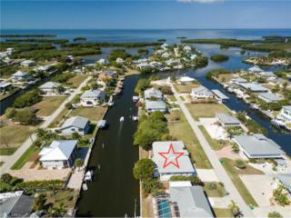 24257 Buccaneer Blvd, Punta Gorda, FL 33955 (#217020631) :: Homes and Land Brokers, Inc
