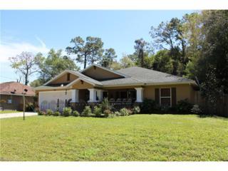 3843 Hopevale St, Fort Myers, FL 33905 (MLS #217020819) :: The New Home Spot, Inc.