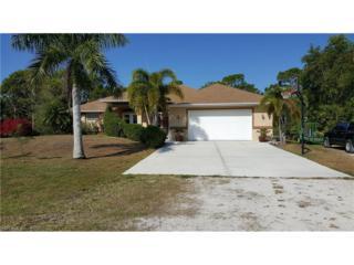 8809 Kodiak Ln, St. James City, FL 33956 (MLS #217020995) :: The New Home Spot, Inc.