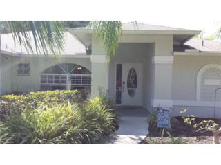 13831 Willow Bridge Dr, North Fort Myers, FL 33903 (MLS #217021084) :: The New Home Spot, Inc.