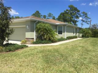 3153 Redstone Cir, North Fort Myers, FL 33917 (MLS #217021131) :: The New Home Spot, Inc.