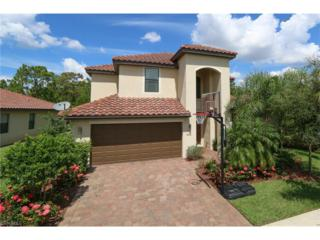 9416 River Otter Dr, Fort Myers, FL 33912 (MLS #217021135) :: The New Home Spot, Inc.