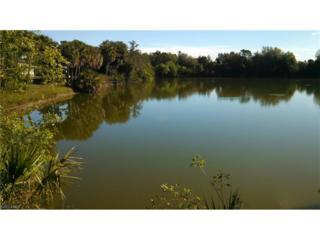12112 Borax Ave, Punta Gorda, FL 33955 (MLS #217021319) :: The New Home Spot, Inc.