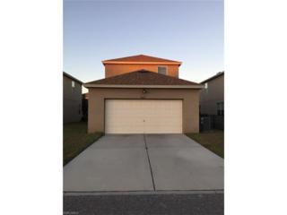 8637 Turnstone Shore Ln, Riverview, FL 33578 (MLS #217021416) :: The New Home Spot, Inc.