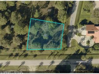 6970 Seminole Ave, Fort Myers, FL 33905 (MLS #217021448) :: The New Home Spot, Inc.