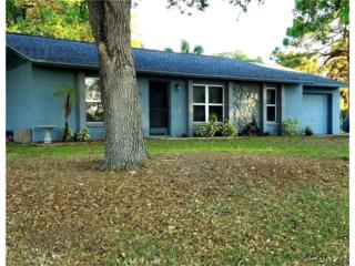 1414 Portage St, North Port, FL 34287 (MLS #217021487) :: The New Home Spot, Inc.