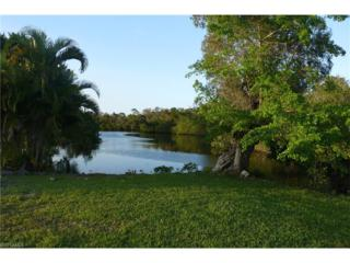 1751 Cobia Way, North Fort Myers, FL 33917 (#217021491) :: Homes and Land Brokers, Inc