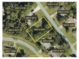 19022 Coconut Rd, Fort Myers, FL 33967 (MLS #217021522) :: The New Home Spot, Inc.