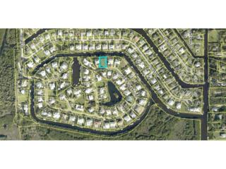 6091 Tidewater Island Cir, Fort Myers, FL 33908 (MLS #217021531) :: The New Home Spot, Inc.
