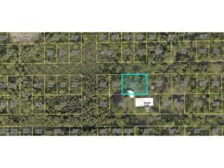 Papaya Ave, Bokeelia, FL 33922 (MLS #217021763) :: The New Home Spot, Inc.