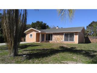 701 Robin Ave, Palm Harbor, FL 34683 (MLS #217022062) :: The New Home Spot, Inc.