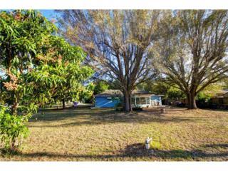4213 4th St W, Lehigh Acres, FL 33971 (MLS #217022190) :: The New Home Spot, Inc.