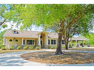 17741 Rancho 78 Dr S, Alva, FL 33920 (MLS #217022319) :: The New Home Spot, Inc.