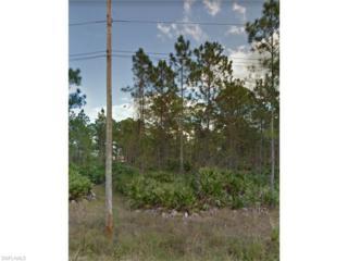 118 Louis Ave, Lehigh Acres, FL 33936 (MLS #217022429) :: The New Home Spot, Inc.