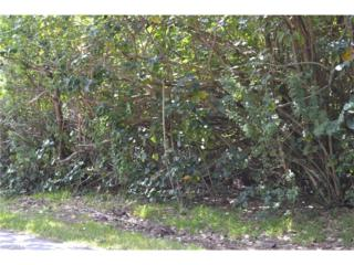 3459 6th Ave, St. James City, FL 33956 (MLS #217022486) :: The New Home Spot, Inc.