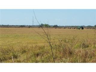County Rd 835, Clewiston, FL 33440 (MLS #217022727) :: The New Home Spot, Inc.
