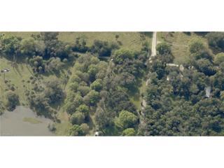 1951 Sunset Trl, Alva, FL 33920 (MLS #217022814) :: The New Home Spot, Inc.